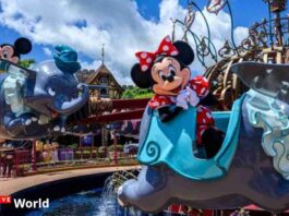 Disney US Theme Park